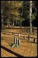 Skogskyrkogården - KMB - 16000300018369.jpg