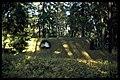 Skogskyrkogården - KMB - 16000300018442.jpg