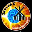 Skylab1-Patch.png
