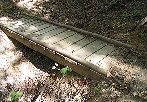 Timber bridge - The Beam bridge