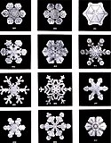 Snowflakes by Wilson Bentley, 1902