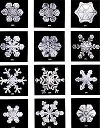 التبلور في الطبيعة 200px-SnowflakesWils