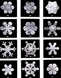 Snowflakes (ice crystals) by Wilson Bentley, 1902