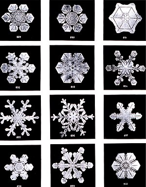 Ice - Snowflakes by Wilson Bentley, 1902. Snow is ice that grows from water vapor in Earth's atmosphere, which is why it usually displays crystal shapes.