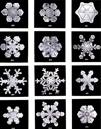 Crystallization - Snowflakes are a very well-known example, where subtle differences in crystal growth conditions result in different geometries.