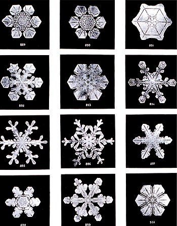 SnowflakesWilsonBentley.jpg