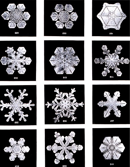 Snowflakes are a very well-known example, where subtle differences in crystal growth conditions result in different geometries. SnowflakesWilsonBentley.jpg