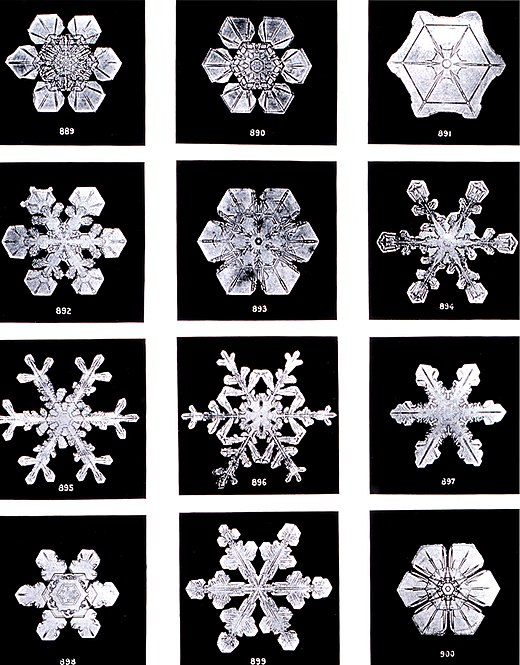 The formation of complex symmetrical and fractal patterns in snowflakes exemplifies emergence in a physical system.
