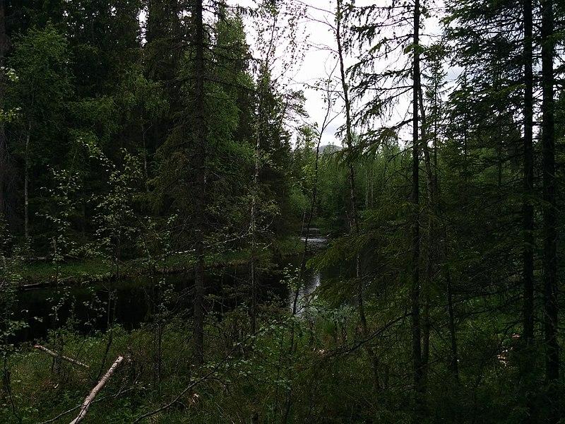 File:Sonfjället Nationalpark Entré Valmen.jpg