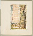 Songs of Innocence and of Experience- The Little Girl Found (second plate) MET DP816678.jpg