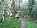 Southerly footbridge in Long Wood, Nuthurst - geograph.org.uk - 414012.jpg