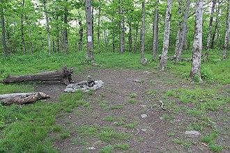 Springer Mountain - Image: Springer Mountain campsite (21990723340)