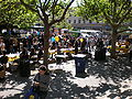 Sproul Plaza during Cal Day 2009 6.JPG
