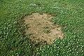 St. Albans Park td (2019-06-21) 039 - Baseball Field.jpg