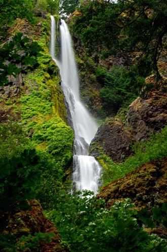 Starvation Creek Falls - Starvation Creek Falls in the Summer