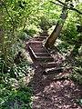 Steps - geograph.org.uk - 418315.jpg