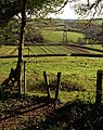 Stile, Tor Hill Plantation - geograph.org.uk - 1075077.jpg