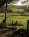 Stile, Tor Hill Plantation - geograph.org.uk - 1075077.jpg