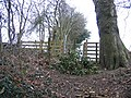 Stile at Coed y Cra - geograph.org.uk - 324351.jpg