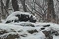 Still Hunt snowing jeh.jpg