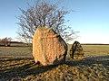 Stone with runes (1).jpg