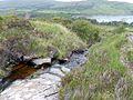 Stream on the hillside above Loch Scresort (geograph 4567044).jpg
