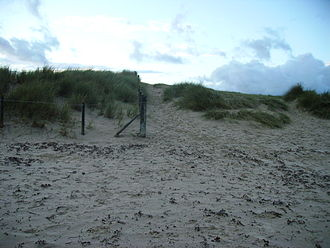 Studland - An example of fencing at Studland and its success