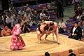 Sumo tournament (15528696140).jpg