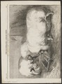 Sus scrofa domestica - 1863 - Print - Iconographia Zoologica - Special Collections University of Amsterdam - UBA01 IZ21900129.tif