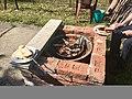 Szalonna roasting .jpg