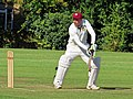 Takeley CC v. South Loughton CC at Takeley, Essex, England 092.jpg