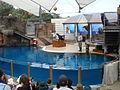 Taronga Zoo (6182492918).jpg
