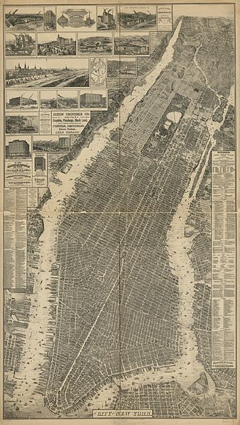 The Taylor Map of New York, 1879