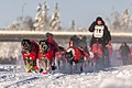 Team Bernhard Schuchert Dogsled, Alaska (26723767748).jpg