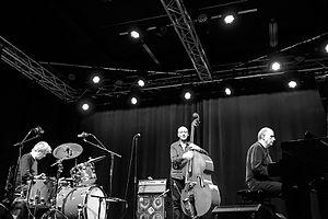 The Necks - Buck, Swanton and Abrahams performing in Aarhus, Denmark, November 2015