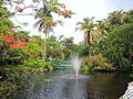 The Garden of the Groves, en Gran Bahama