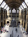 The Natural History Museum, London - DSCF0391.JPG