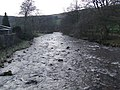 The River Ribble - geograph.org.uk - 615799.jpg