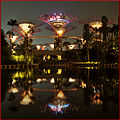The Super Trees... courtesy of Indochine (8104864649).jpg