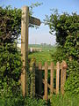 Thorpe Bassett - Path - geograph.org.uk - 166494.jpg