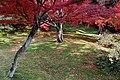 Tofuku-ji (4585132367).jpg