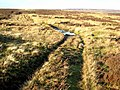 Track on Wolsingham Park Moor - geograph.org.uk - 297737.jpg