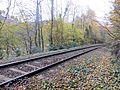 Tracks through the trees - November 2013 - panoramio.jpg