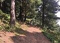Trail to Mushkpuri Top.jpg