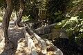 Trees Buskett Gardens.jpg