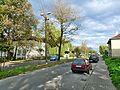 Trynek - panoramio (18).jpg