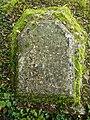 Tyndall's grave.jpg