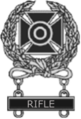 U.S. Army Expert Marksmanship Badge wClasp.png