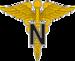 USA - Army Medical Nurse.png