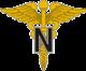 Nurse Corps branch of service insignia